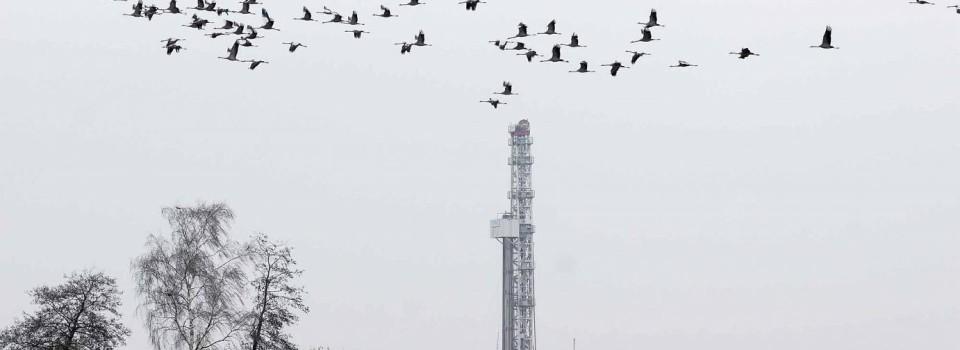 """""""Fracking""""-Expertise bei vielen Politikern nicht erwünscht"""