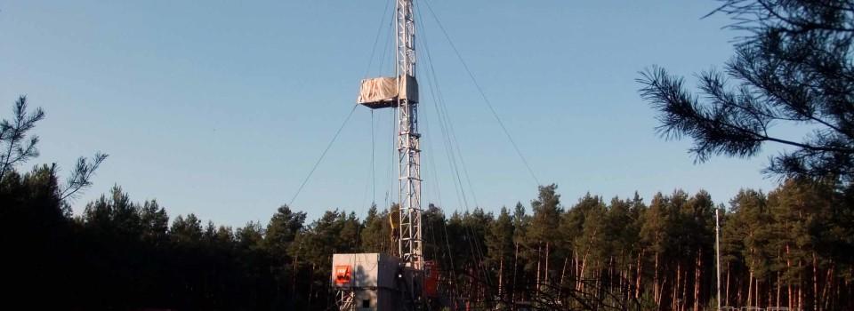 Brandenburg: Seeadlerpaar brütet in Nähe von Erdgasbohrung