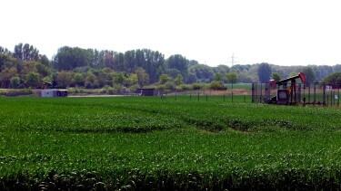 Erdölförderung nördlich von Braunschweig zwischen Harxbüttel und Eickhorst chef79